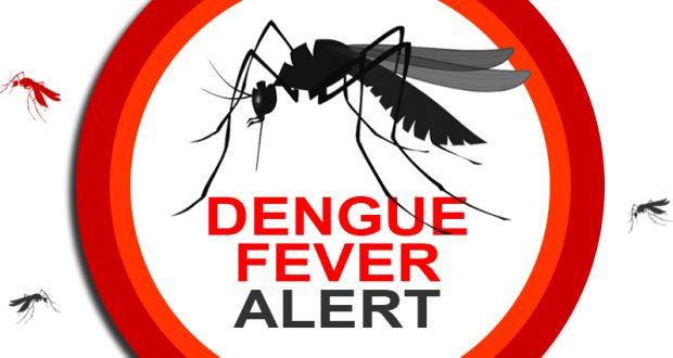 Dengue Fever Alert News