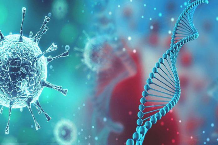 Corona Virus mutation d614g