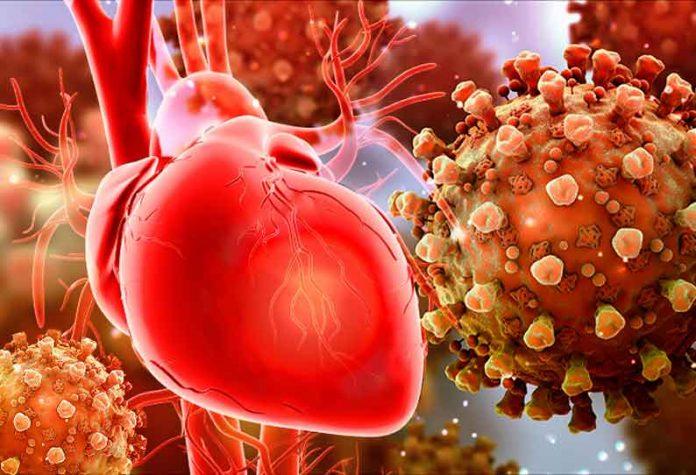 202008060206578145 Corona virus that infects the heart medical experts shock SECVPF