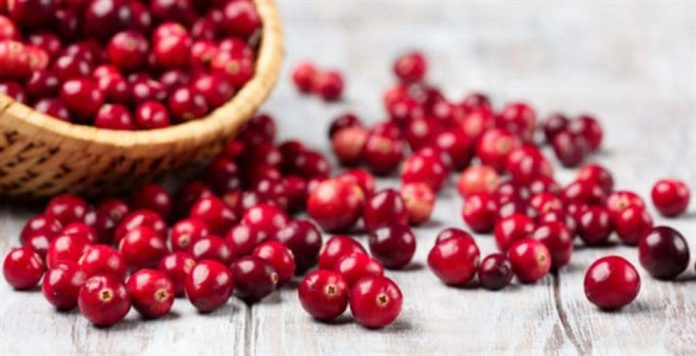 Cranberries Top 6 Benefits of These Antioxidant Superfruits