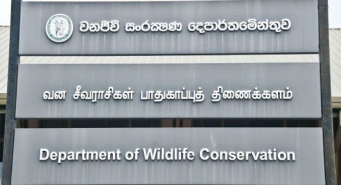 d7c2920e 0776cf03 department of wildlife conservation 850 850x460 acf cropped