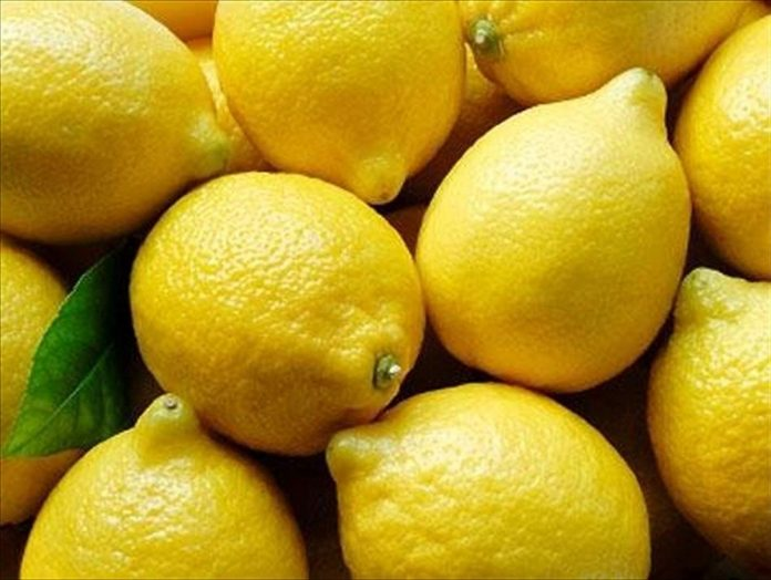 lemon 222
